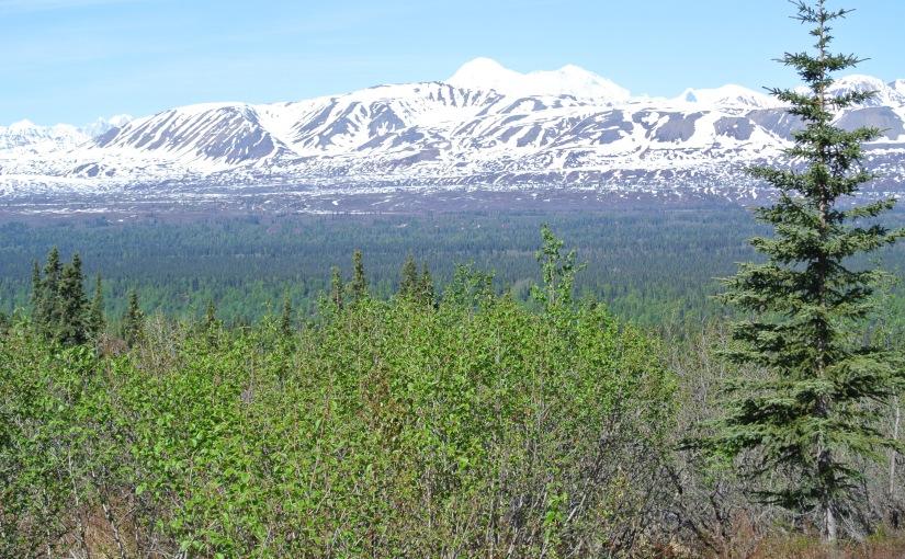 Alaska: The Last CleanFrontier